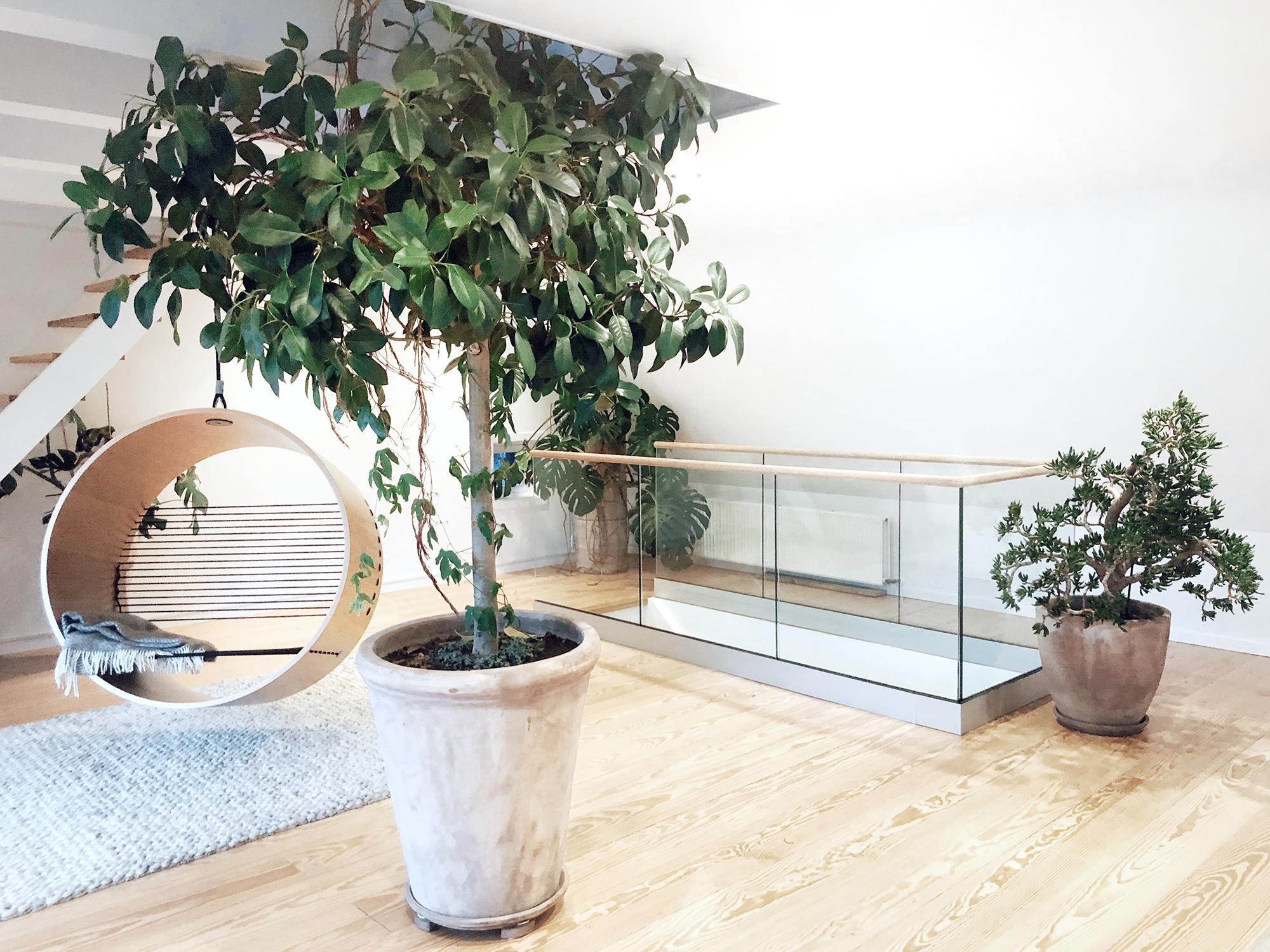Glasgelander Im Innenraum Massgefertigt Fur Sie Gelanderladen
